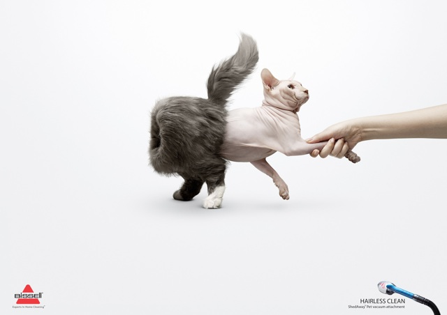 This ad by Bissel is a great example of Advertising that Works! The image is clean but expressive, and there's a minimum of text. Image courtesy of http://popurls.com