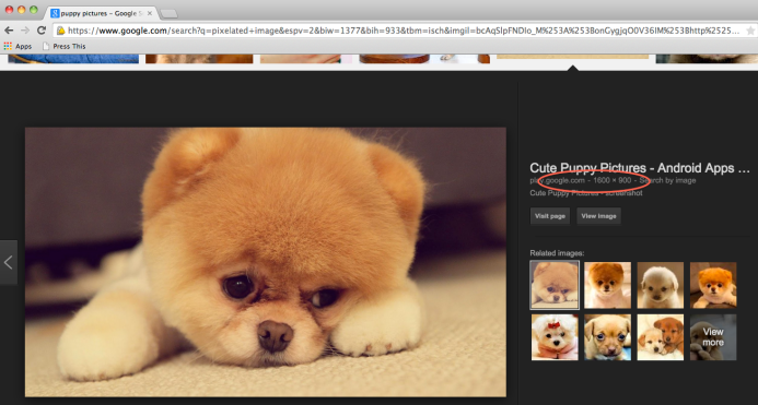 This sad puppy is 1600x900 pixels. That means the image can be printed as large as 5.3x3 inches without any degradation of the image quality. He's sad because you tried to print him 10x6. Image courtesy of Google.com.